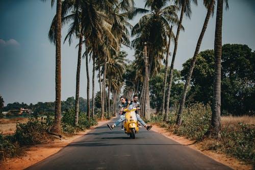 екзотична дестинация, пътешествие, палми