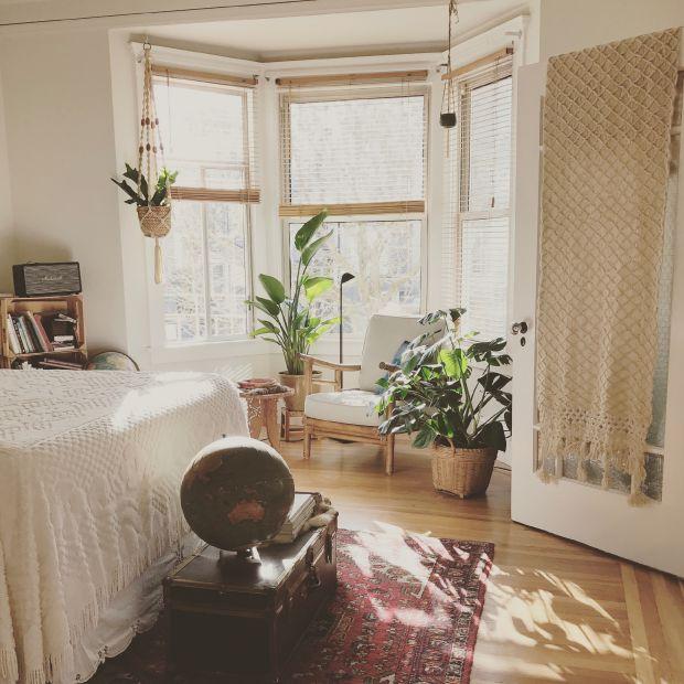спалня, дом, растения