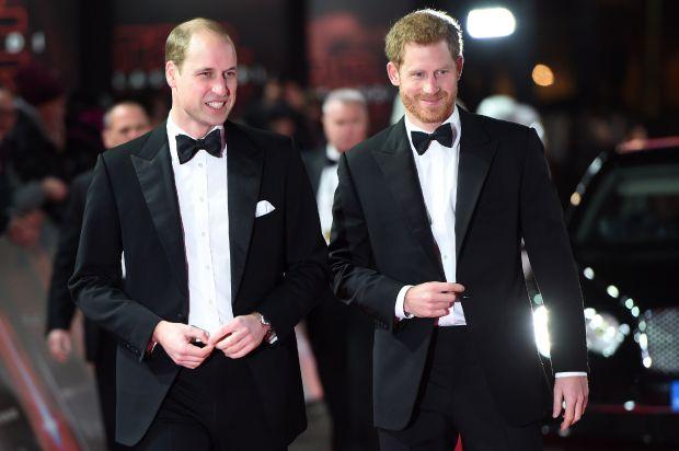 принц хари, принц уилям