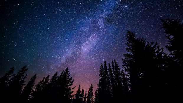 звезди