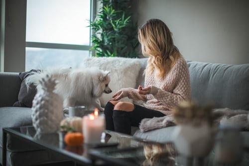 жена, куче, дом, декор, нов