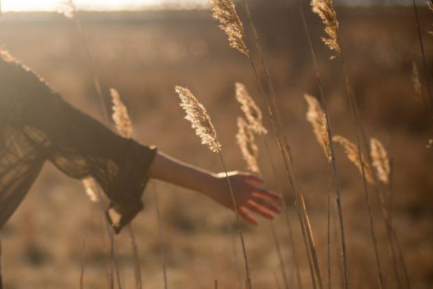 ръка, протягам, докосвам, взимам, възможности