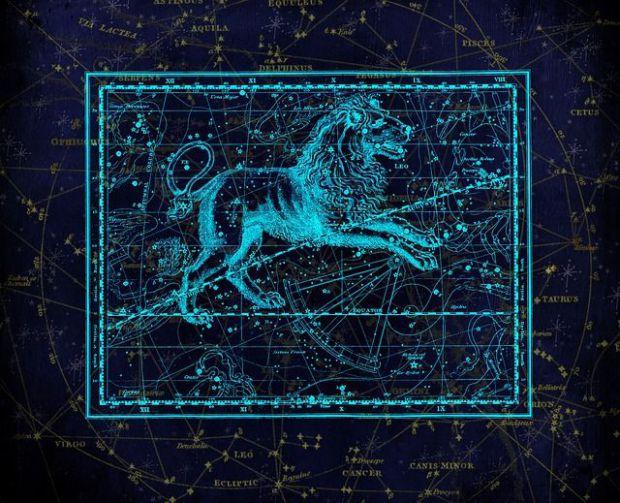 съзвездие, астрология, лъв, венера в лъв