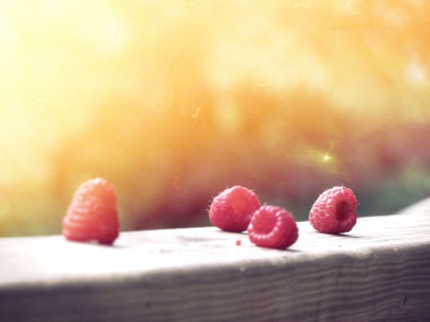 горски плодове
