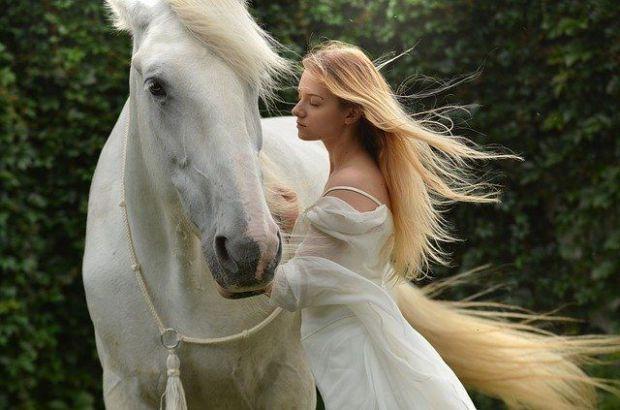 зодия риби, принц на бял кон
