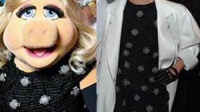 На коя й отива повече: Пиги или Лейди Гага?