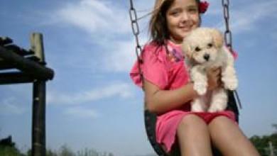 Куче у дома прави детето по-здраво и по-слабо