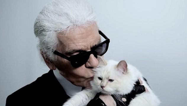 Котката на Лагерфелд даде интервю