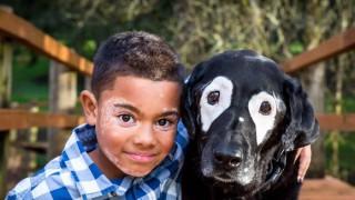 Дете с рядко заболяване срещна своето куче близнак
