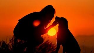 На Лъвовете ще им върви, Девите ще срещнат хора от миналото си