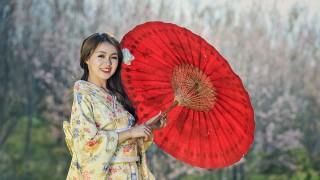 Европейският вариант на жестоката диета на гейшите