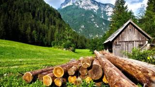 На планина през лятото - смарагдови гледки и мистична красота
