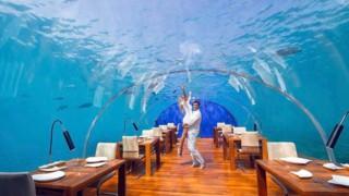Уникалният подводен ресторант в сърцето на Индийския океан