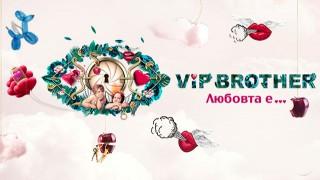 Кой трябваше да влезе във VIP Brother