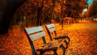 Първият ден от есента е магичен - вижте защо