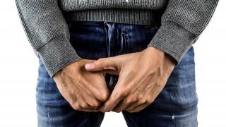 9 възбуждащи факта за пениса