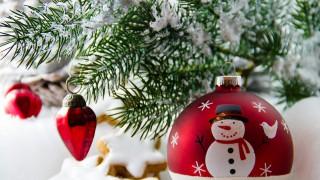 Изберете си дърво и узнайте какви промени ви чакат през новата година
