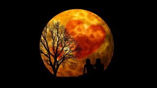 Девите - с добри перспективи в любовта. Везните да се настроят на романтични вълни