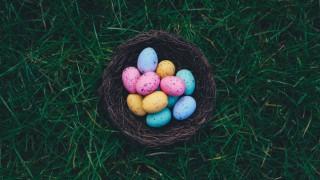 Защо боядисваме яйца на Великден и как се появяват шоколадовите яйца?