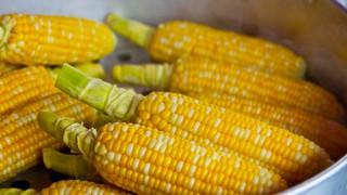 В сезона на царевицата - не му мислете, а веднага си сварете