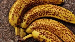Неочаквано! Презрелият банан лекува рак!