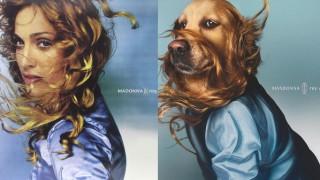 Куче взриви Интернет с уникалните си фотопародии на Мадона (Снимки)