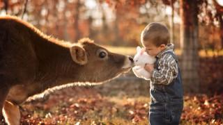 Вълшебната връзка между децата и природата през обектива на един баща (Снимки)