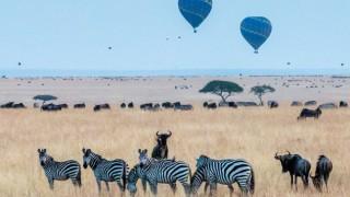 ТОП 10 на най-красивите сафари дестинации в Африка