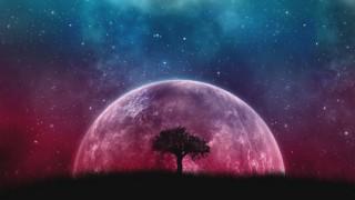 Ретроградна Венера ни връща хора, които някога сме обичали