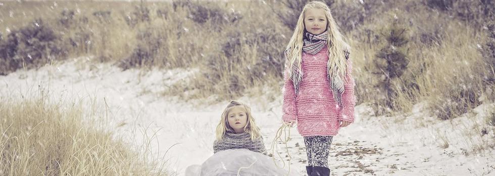 Какво е снежната зима без хубава шейна?