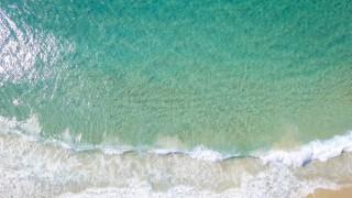 Запознайте се с номадите на морето - променени, за да живеят под вода