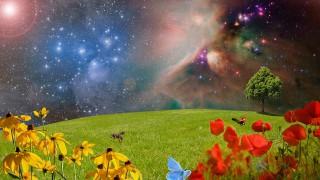 Пролетта настъпва с магическа нощ и суперлуна