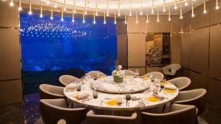 Добре дошли в първия подводен ресторант в Европа!