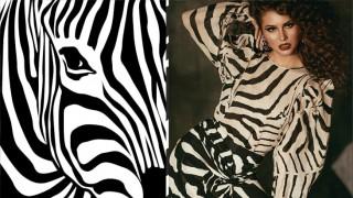 Готови ли сте да пуснете зебрата в гардероба си?