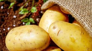 Картофена диета сваля 5 кг за 3 дни