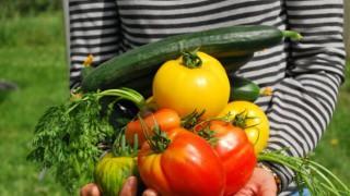В сезона на свежите плодове и зеленчуци: Защо да заложим на гарантирано пресни и български