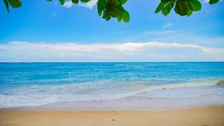 Самотен плаж и хубава книга - всичко, от което имам нужда