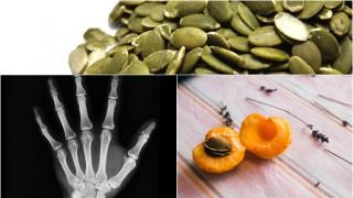 За здрави кости чоплете тиквени семки