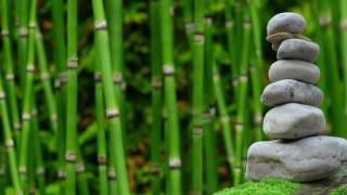 Яжте и пийте с наслада: 10 безценни принципа на дзен будизма