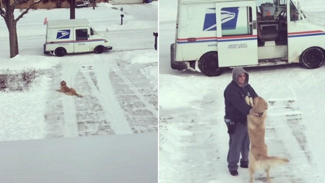 Куче чака всеки ден пощальона, за да получи... прегръдка