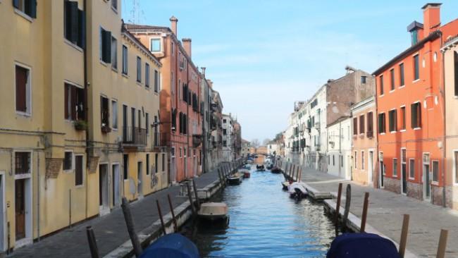 Делфините се върнаха в каналите на Венеция (снимки)