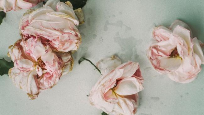 Писмо от бъдещето до Англия: Ще обсипете с рози пътя на лекарите и сестрите