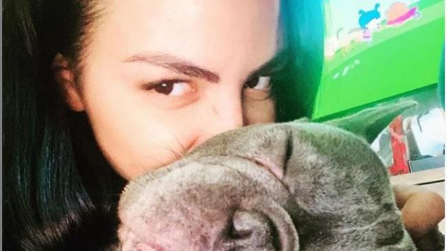 Къде изчезна кучето на Деси Цонева?
