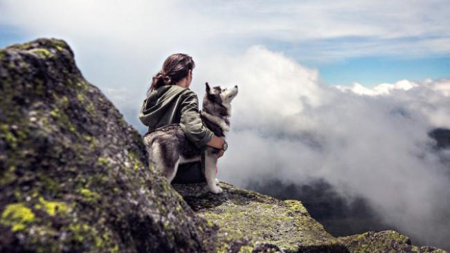 Любов на четири лапи! Ето защо кучето е най-добрият приятел на човека