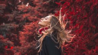Овенът през октомври: Емоции, вълнение и динамика