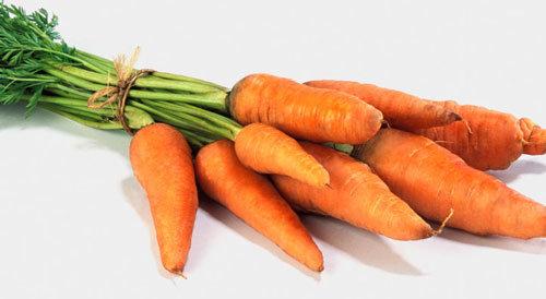 morkovi